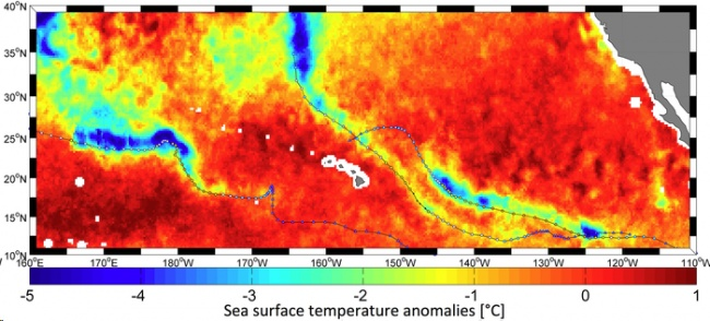 Los huracanes alteran la temperatura de la superficie del mar / Créditos:  Ifremer–N. Reul/ESA SMOS+STORM project and REMSS