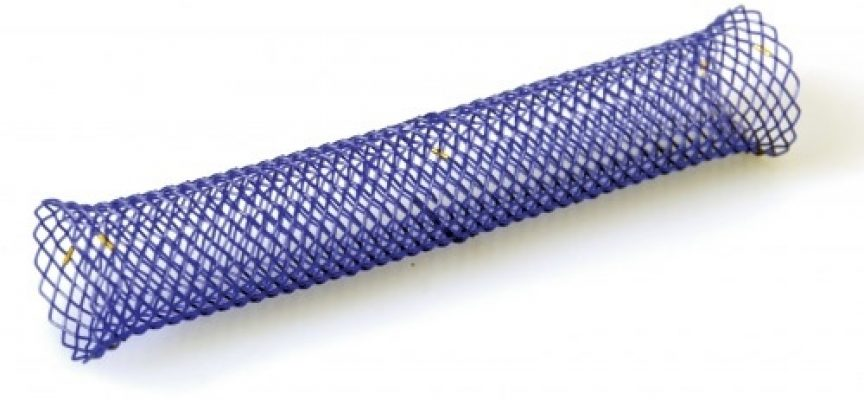Stents biodegradables